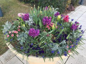 Pot de fleurs dans la ville de Brécey